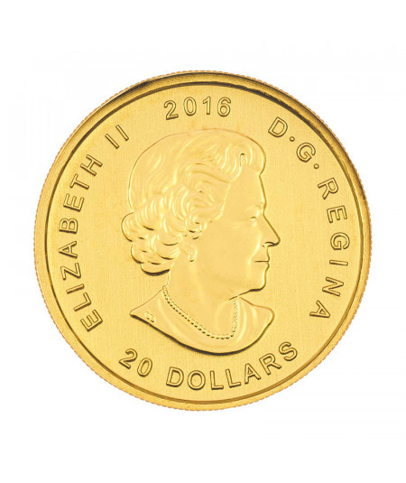 1/10oz Growling Cougar Gold Coin from 2016 - Serie Call of the Wild
